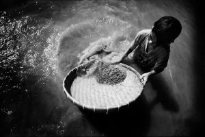 A boy panning for gems in the area of Borai in along the Cambodian border in Thailand