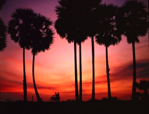 Southern Thailand sunset 1983