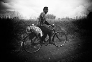 Bicycling his catch home in Uganda (1986)