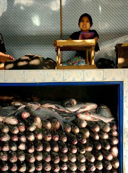 Fish market in Yangoon